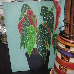 Begonia Maculata Painting